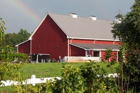 Farm to Table Fundraiser